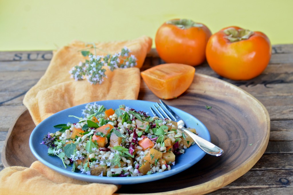 Farro with persimmons