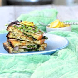 Grilled eggplant snadwich