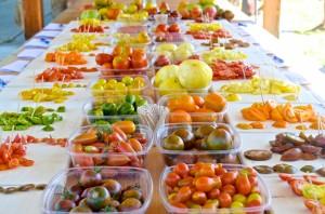 Sunshine Farm Tomato Festival 2014