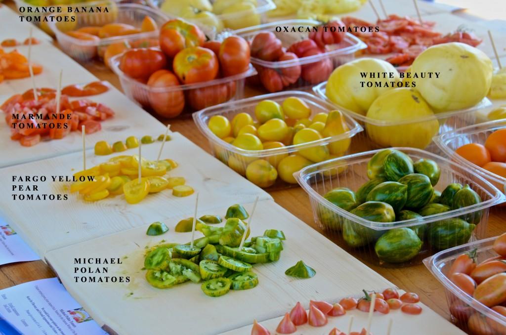 Sunshine Farm heritage seeds tomatoes