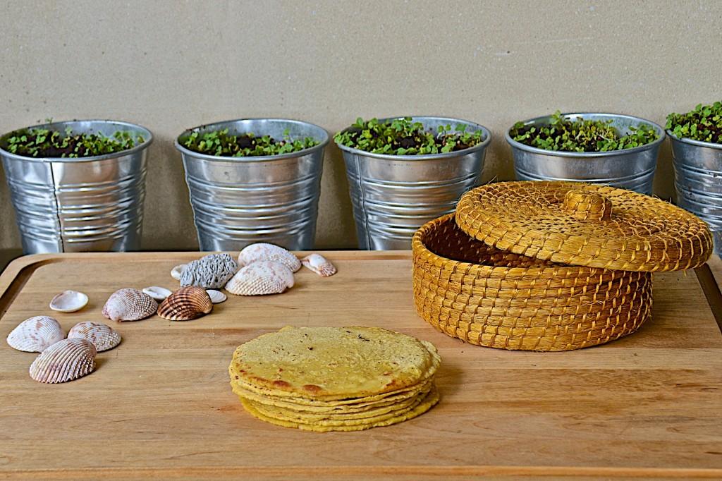 Homemade tortillas (with tortilla press)