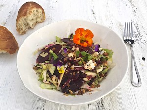Endive and beet salad with gorgonzola