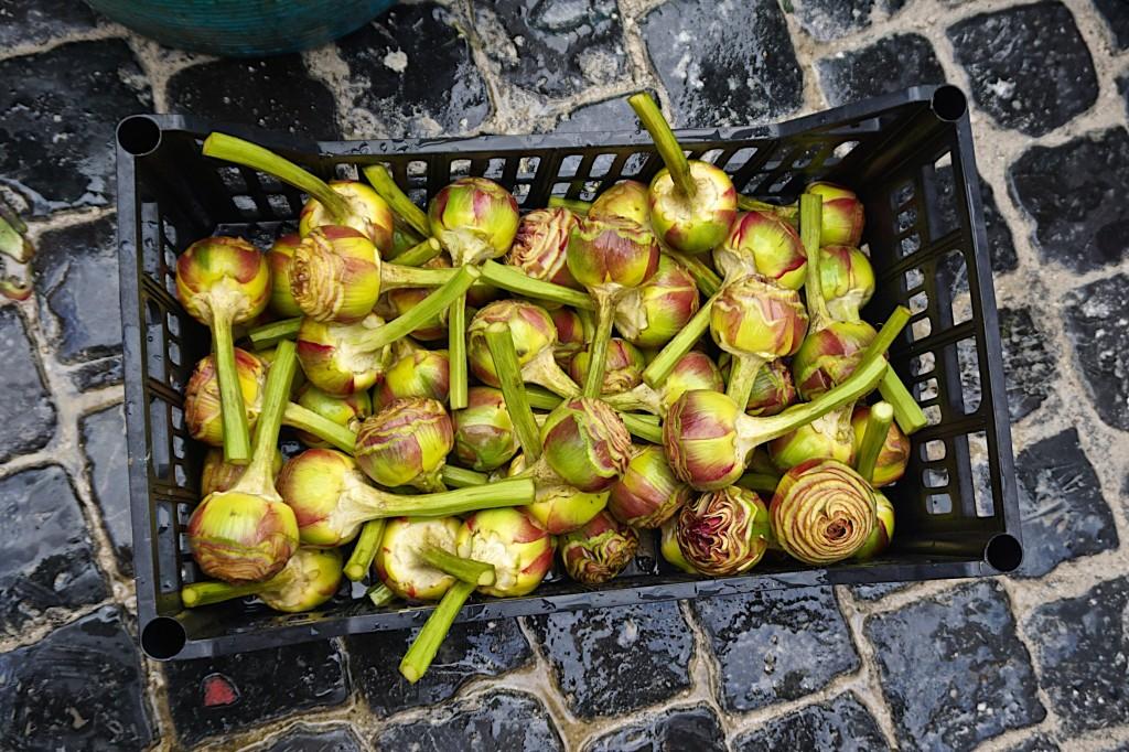 Trimmed artichokes