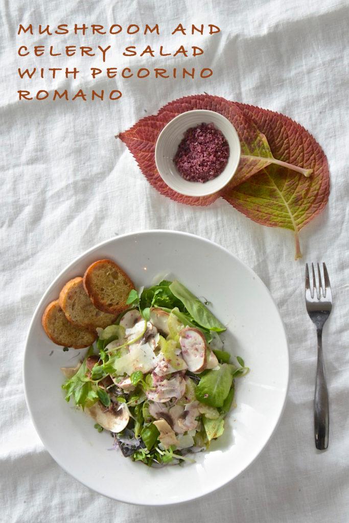 Mushroom and celery salad with shaved pecorino