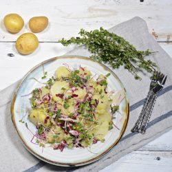 Potato and radicchio salad