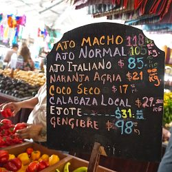 DAC market, Playa del Carmen