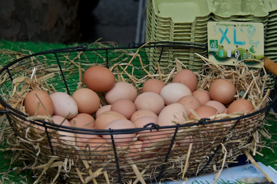 Eggs at Paris organic market in Saint Germain