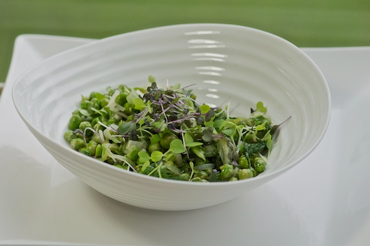 Fresh peas with butter lettuce and dill