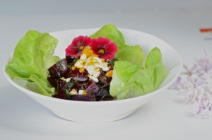 Beet salad with hard boiled egg and dill