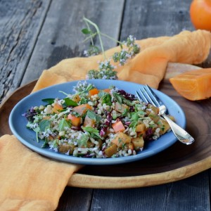 Farro and persimmon salad