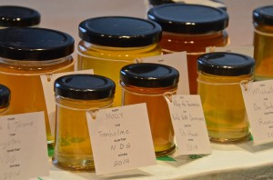Alveole: local honey in Montreal