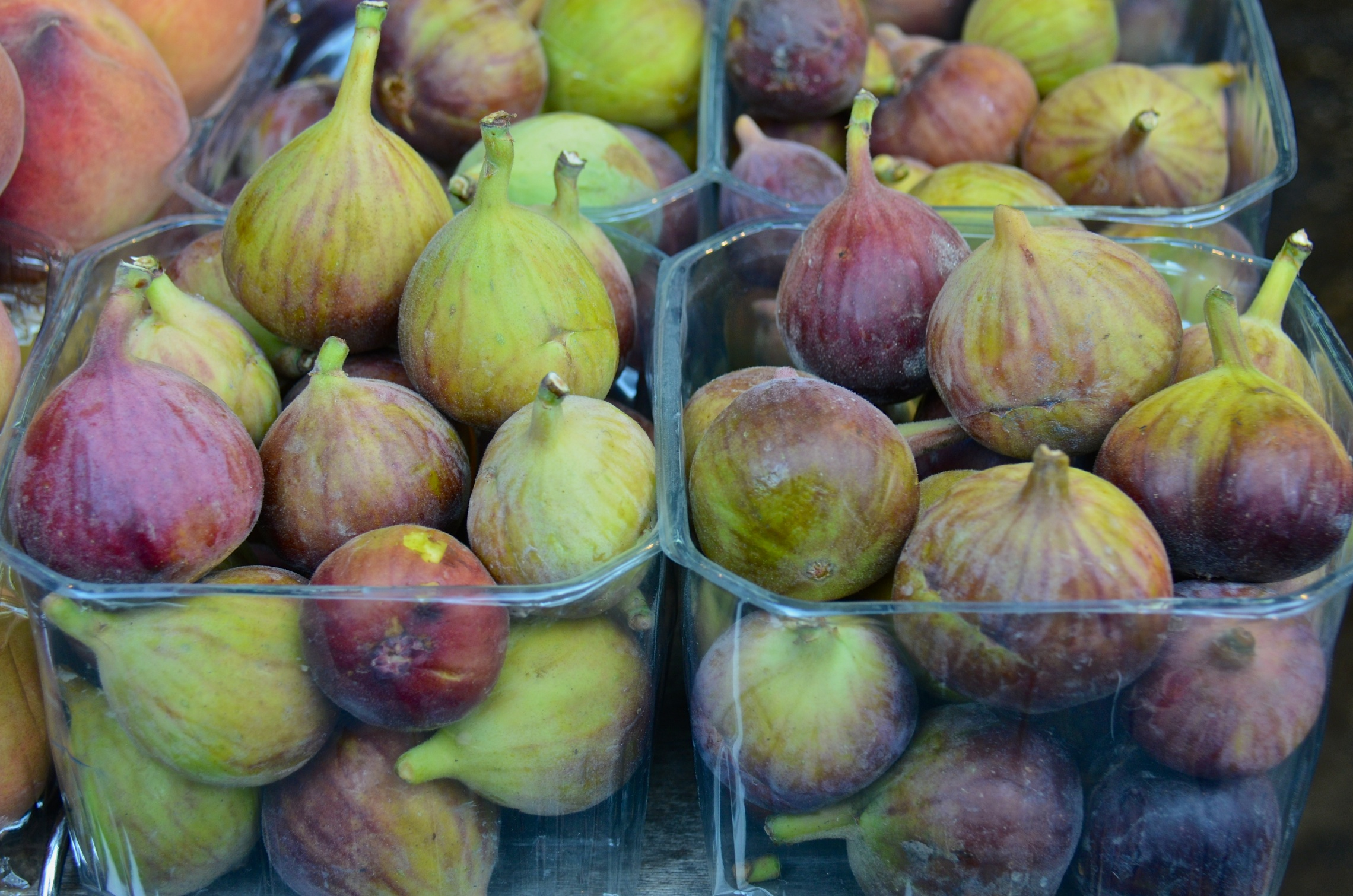 Fresh figs at Shuk Ha'Carmel