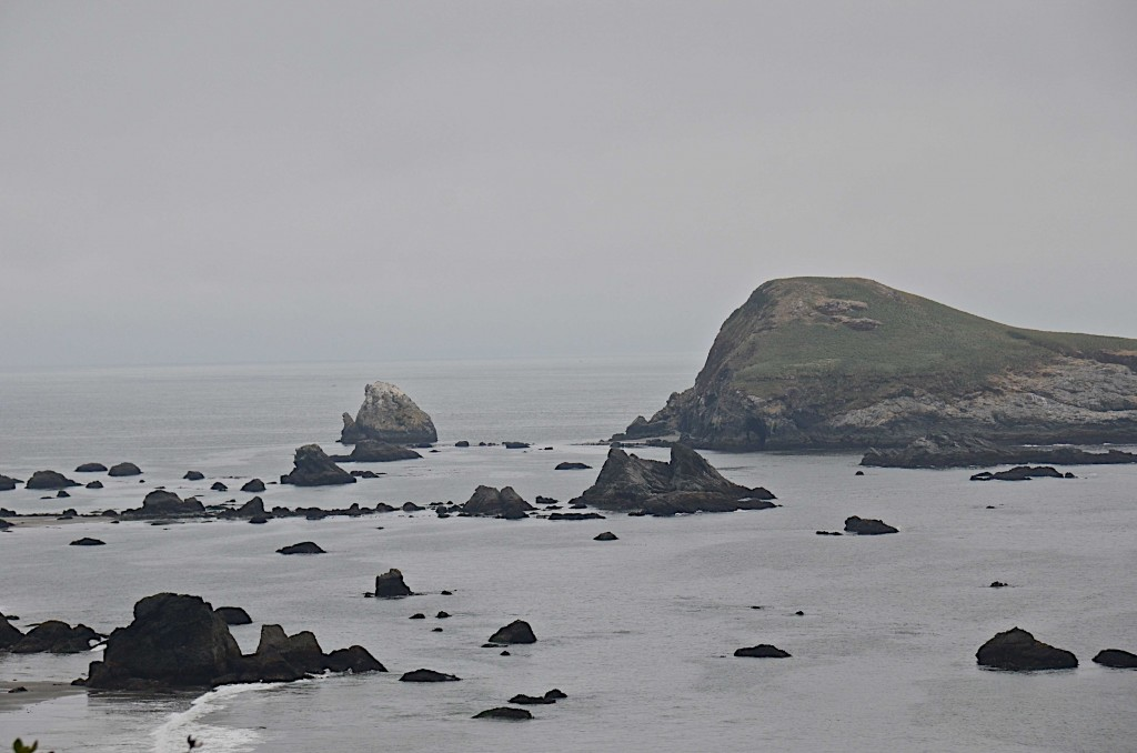 The sea front at Brookings, Oregon