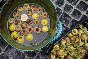 Trimmed artichokes in lemon water