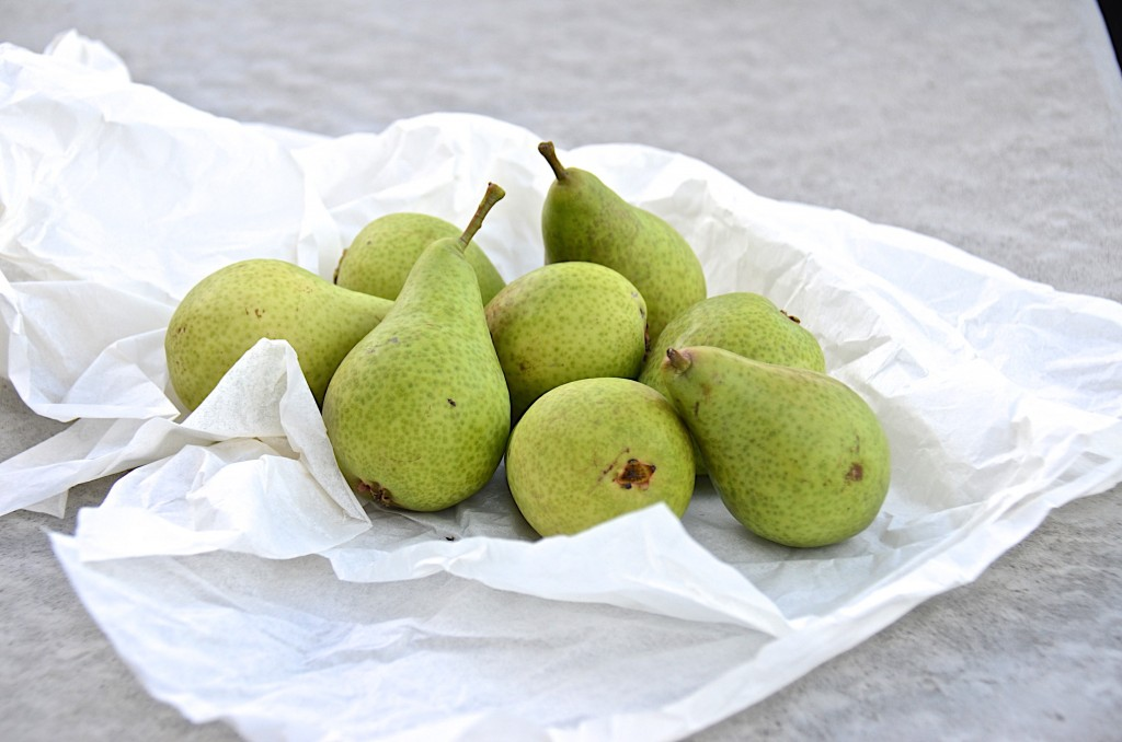 Honey Belle pears