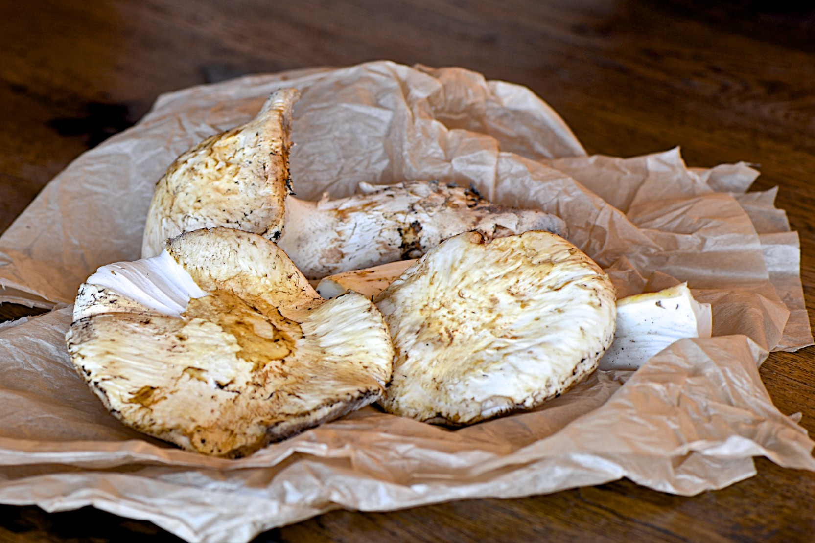 Wild pine mushrooms