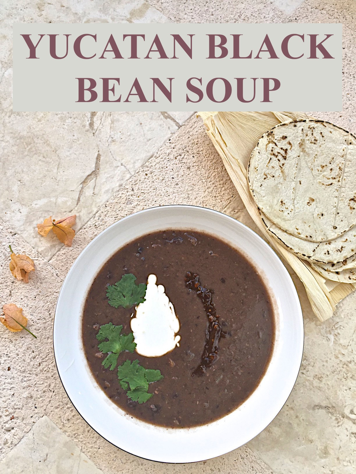 Yucatan black bean soup